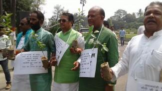 भाजपा विधायक पौधे के साथ पहुंची विधान परिषद बढ़ते प्रदूषण को लेकर जता रहे थे चिंता