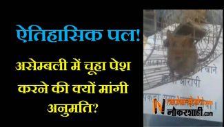 Rat in Bihar Assembly